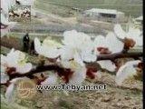 سمرقند و بخارای عزیز -نوروز در تاجیکستان یادی از هموطنان قدیمی
