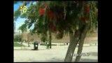 ارگ کریم خان-شیراز