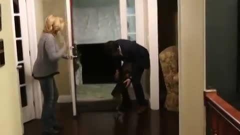 خوش حالی در حد مرگ سگ بعد از دیدن صاحبش!!!
