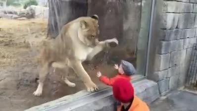 میخواد یه لقمش کنه