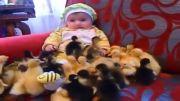ذوق مرگ شدن کودک از دیدن اینهمه جوجه اردک