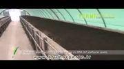تولید ورمی کمپوست کود ارگانیک کود کرم آیزینیا فتیدا