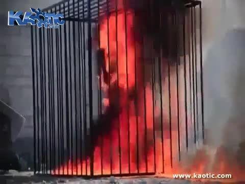 سوزاندن خلبان اردنی توسط داعش