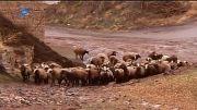 جای زندگی - روستای زرجه بستان (قسمت3)