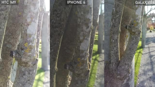 Samsung Galaxy S6 vs iPhone 6 vs HTC One M9 : camera
