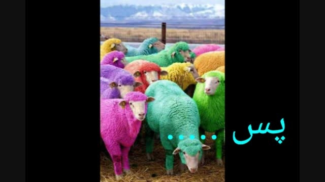 ..::عید قربون رو به همه مسلمانان جهان تبریک می گم ::..