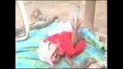 معجزه /نوزادی در حفاظت مارهای سمی کبری/حتما ببینید