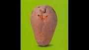 فیلمی که به شما ایده های فوق العاده برای میوه آرایی خواهد داد!!
