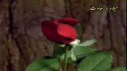 میلاد با سعادت حضرت امام حسن مجتبی علیه السلام مبارک