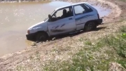 HOW TO REMOVE A FESTIVA FROM A POND