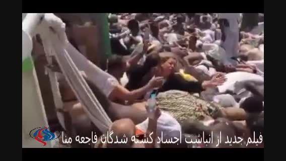 جدیدترین فیلم انباشت کشته شدگان فاجعه منا