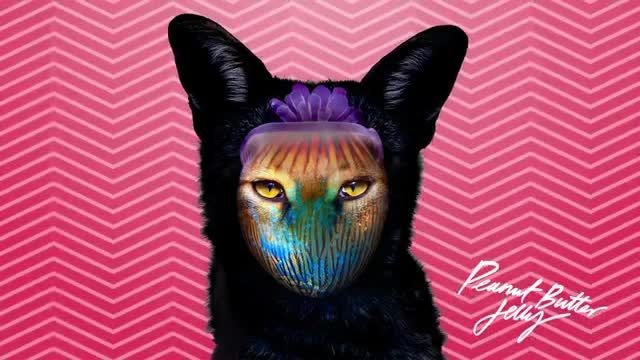 Galantis - Peanut Butter Jelly [Official Audio]