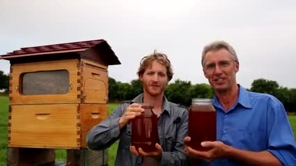 نسل جدید کندوی زنبور عسل