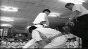 یازده مبارزه بسیار زیبای از صد مبارزه اکیرا ماسودا کیوکوشین