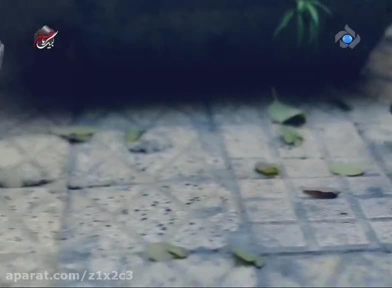 "موزیک ویدیو ""رفاقت ما""  - علی اکبر قلیچ"