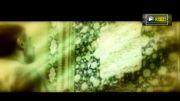 کلیپ بسیار زیبای صدایم کن با صدای مجید اخشابی
