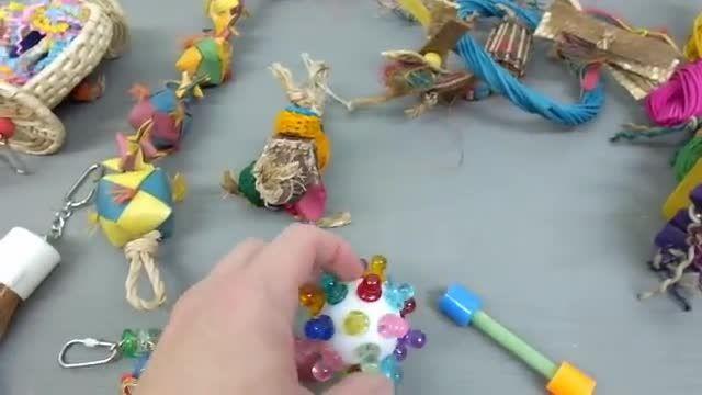 انواع اسباب بازی طوطی سانان و پرندگان زینتی
