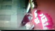 دزد بدشانس در پرنده فروشی منقارکج ها