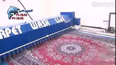 قالیشویی  هوشمند دلفین استان قم