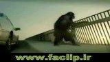 میمون نگهبان ماشین