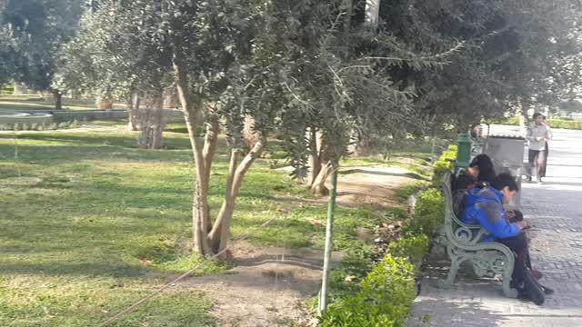 بازدید دانش آموزان از شمس العماره کاخ گلستان