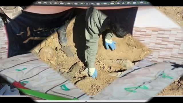 تصاویری تکان دهنده از تفحص ۱۷۵ غواص شهید-ایران-سوریه