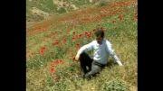سهراب ظهیری ناو.آلبوم چَمَه تالش.هشان هشان-موسیقی تالش.تالش.Talesh Music.Sohrab Zahiri Nav.Album Chama Talesh