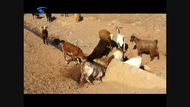 روستای انجیلاق - استان قزوین