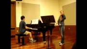 دوئت پیانو و ویولن - The Swan
