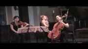 همنوازی ویولن و ویولن سل و پیانو-TRIO CAVATINA
