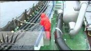 پرورش و فرآوری ماهی سالمون در جزایر فارو (قسمت چهارم)