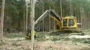 ماشین قطع درخت