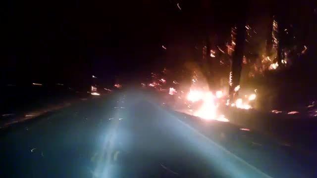 ویدئویی ترسناک از رانندگی وسط جنگل آتش گرفته