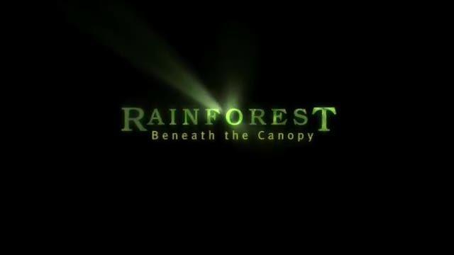 جنگل در زیر سایبان