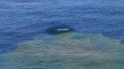 شگفتیهای طبیعت: لحظه تولد یک جزیره از زیر آب