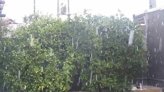 بارش برف در شهر چرام