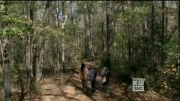 تریلر قسمت 16 از فصل 4 سریال مردگان متحرک (the walking dead)