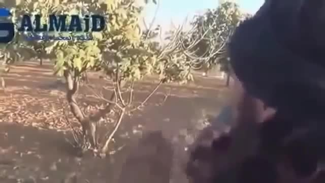 وقتی داعش جِیش الحُر را هم تکفیر میکند..هههه-عراق-سوریه
