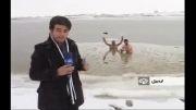 شنا در آب یخ اردبیــل (دریاچه ی شورابیل )