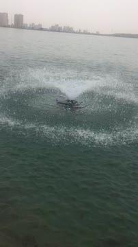 ماهی های غول آسای دریاچه چیتگر