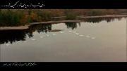عاشقانۀ محمد نوری - شعر از فروغ فرخ زاد