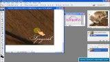 فیلم آموزش حذف کپی رایت و درج لوگو روی عکس به کمک فتوشاپ