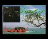 مداحی بسیار زیبا از حاج یزدان ناصری-81