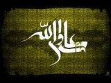 مداحی حاج محمود کریمی به مناسبت شهادت حضرت علی علیه السلام - تا نفس دارم میگم علی ولی الله