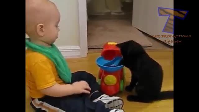 ویدئوی خنده دار از بازی کردن بچه ها و گربه ها...خخخخخخ