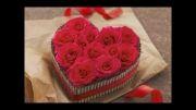 عاشقت شدم.....