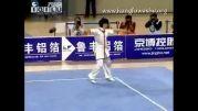 ووشو ، جی ین شو 2009   ، وو دی از بیجینگ ، مقام سوم  ، 9.80