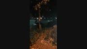 مراسم مرتضی پاشایی در شیراز و...