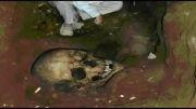 اسکلت غول آسای انسان های اولیه