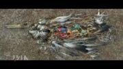 نابودی پرندگان به دلیل آلودگی های زیست محیطی